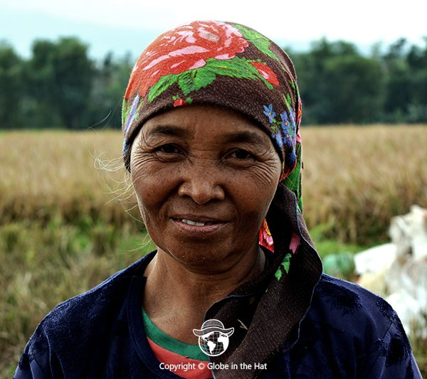 Indonesian woman in a rice field in East Java, Indonesia